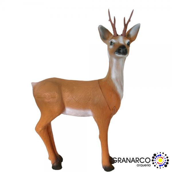 DIANA 3D CORZO (GRUPO III )LONGLIFE