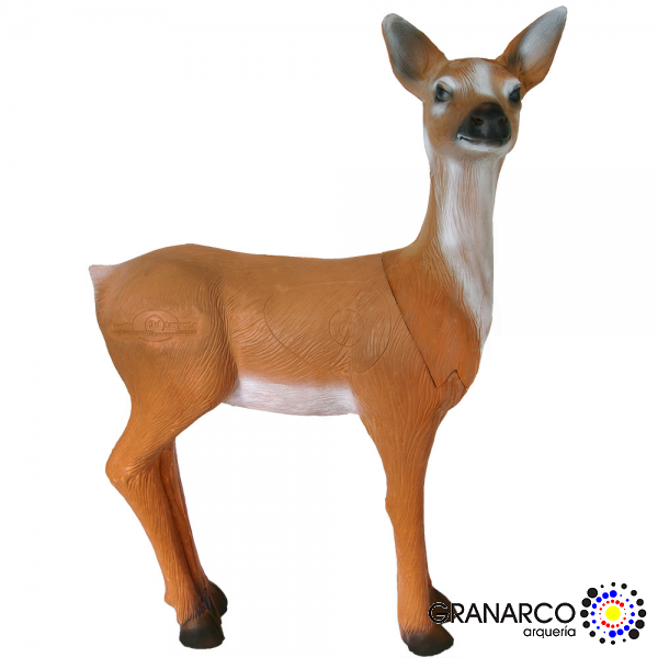 DIANA 3D CORZO HEMBRA (GRUPO III)LONGLIFE