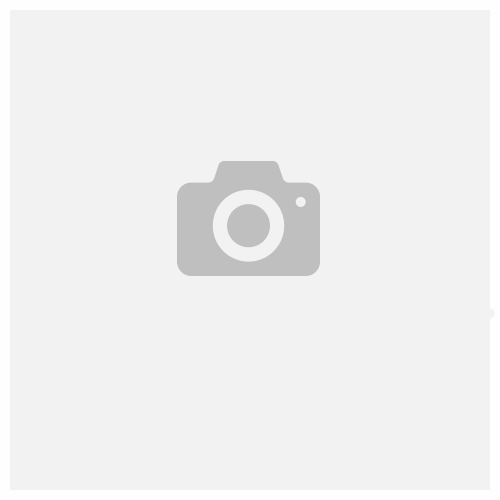 FONESTAR ALTA VOZ 30 AMPLIFICADOR PORTÁTIL PARA CINTURA CON MICRÓFONO Y GRABADOR USB microSD MP3